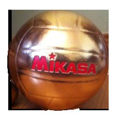Mikasa Gold Ball